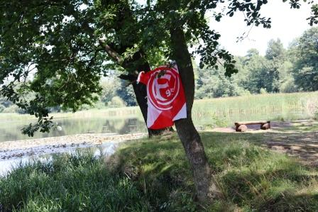 53 RR Polen Buchwalder Parkanlagen auch gesehen