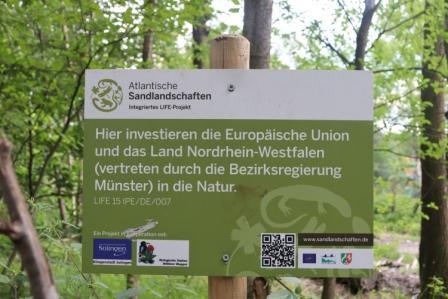 15 Neandersteig 11. Juli Etappe 16 Hildener Stadtwald